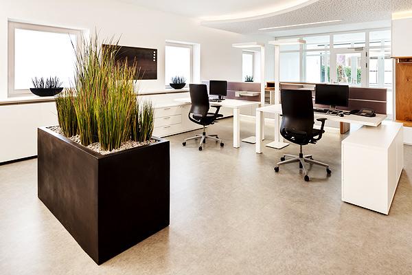 Premium Designer Schreibtische der iONE-Serie - LEUWICO Österreich